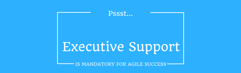 Executive support is mandatory for agile